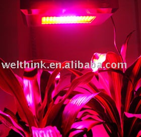 Grow Led Light 300w