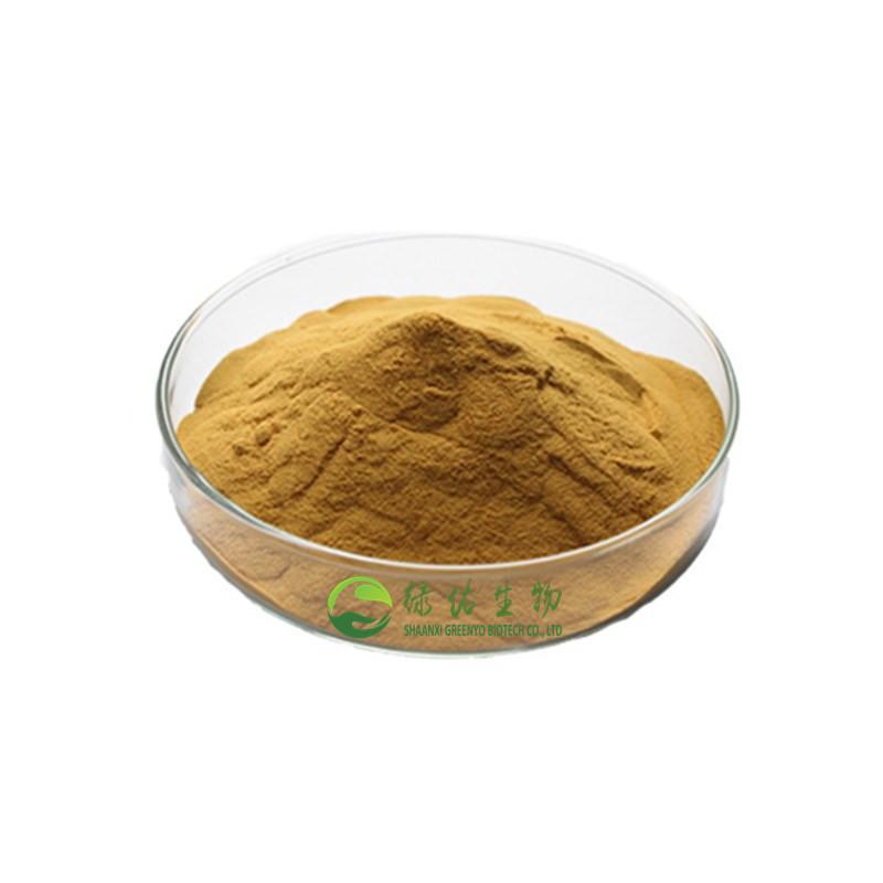 Hoodia Gordonii Extract Powder Hoodia Gordonii Extract Powder