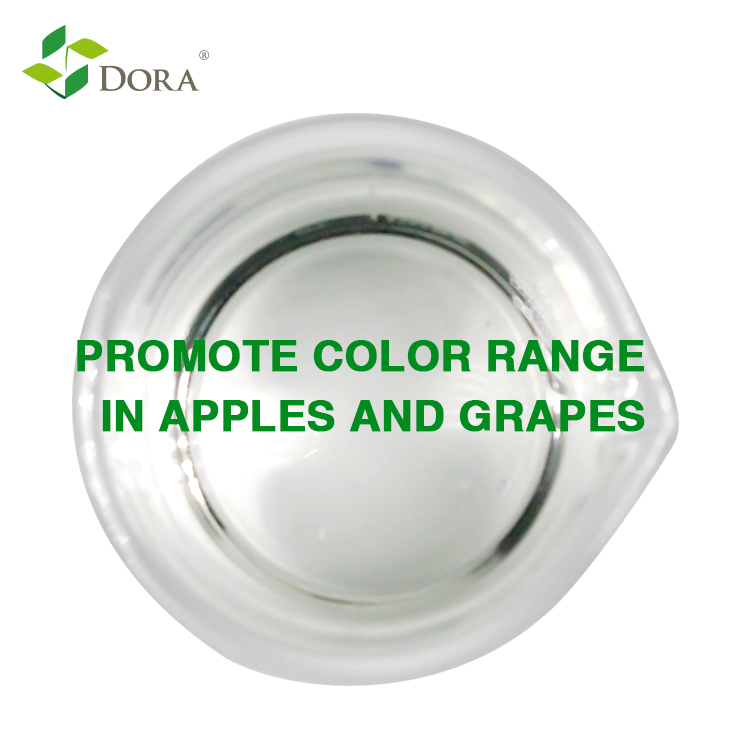 Dora Redden, New products agriculture chemicals for Red Delicious apples