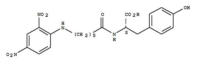 2,4-DINITROPHENYLAMINOCAPROYLTYROSINE